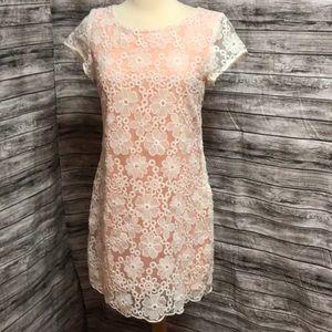 Francesca's beautiful lace overlay dress